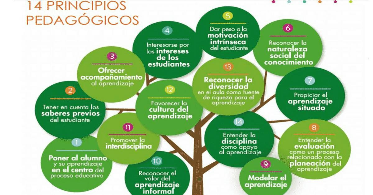Programa ética e cidadania construindo valores na escola e na sociedade inclusão e exclusão social 9