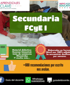 Planeacion didactica argumentada Secundaria Nuevo modelo educativo