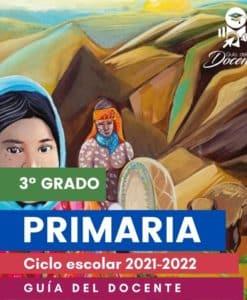 Planeacion argumentada Primaria